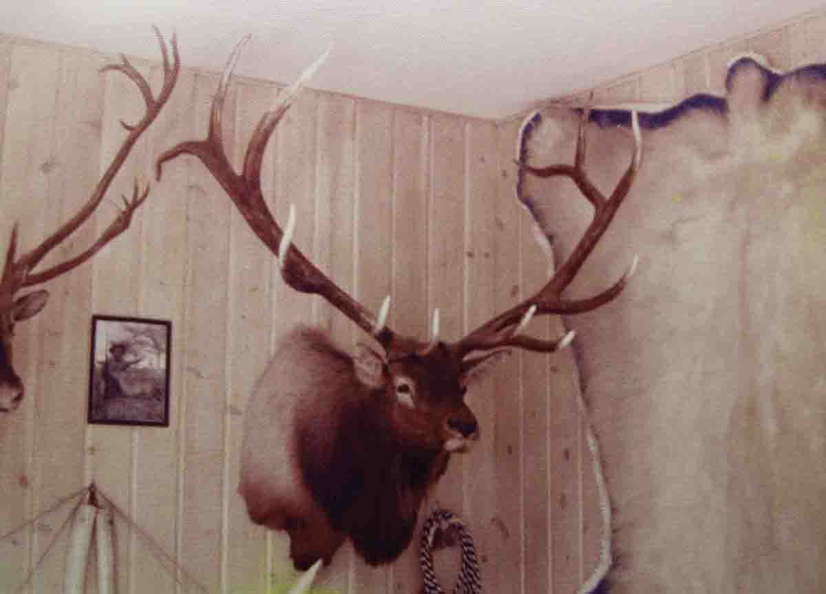 The elk head in Elmer Keith's trophy room that couldn't be scored.